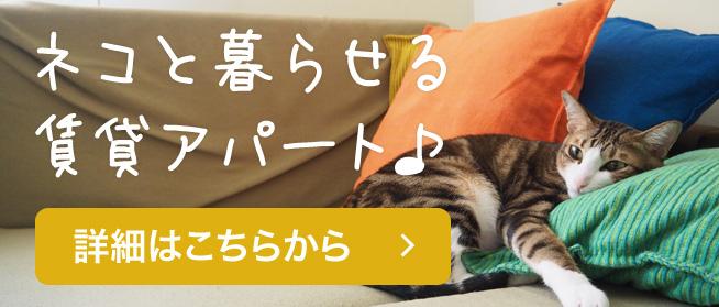 ネコと暮らせる賃貸アパート